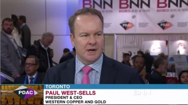 Paul BNN Screenshot